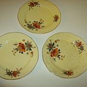 Antique Ivory from Salem Dinner Plates