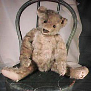 "13"" Antique Steiff Teddy Bear Light Gold Color"