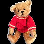"12"" Antique Teddy Bear Light Honey Color Possibly Steiff"