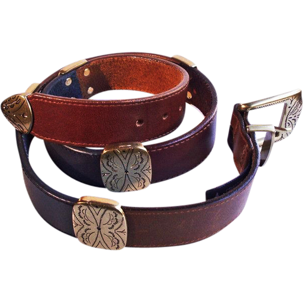 attractive brighton multi colored leather belt from
