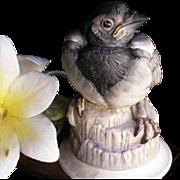 BOEHM Collection of Fine Porcelain Figurine Magpie Fledgling