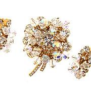 D&E Juliana crystal rhinestone and bead Brooch and clip on earrings