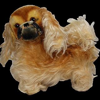Fabulous Vintage c1950s Large Steiff Peky Pekingese Mohair Dog!