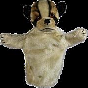 Vintage 1950s Steiff Mohair BULLY Bulldog Hand Puppet Dog!