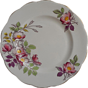 Royal Albert Dog Rose Tea Plate Vintage English Bone China