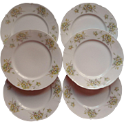 Antique Dessert Tea Plates Weimar China Pastel Flowers German - Red Tag Sale Item