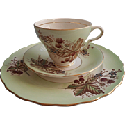 English Bone China Vintage Cup Saucer Plate Trio Pale Green Blackberries