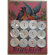 1920s Mother Of Pearl Buttons On Pretty Card Bluebirds Pink Blue