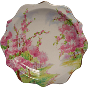 Royal Albert Blossom Time Lemon or Pin Dish Vintage English Bone China