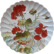 Antique Plate Geraniums China Beautiful Colors