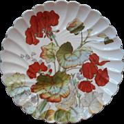 Antique Plate Geraniums China Beautiful Colors