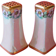 Antique Hand Painted China Salt Pepper Shakers Pink Wild Roses