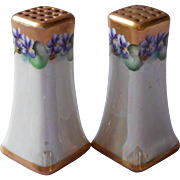 Antique Hand Painted China Salt Pepper Shakers Violets Gold