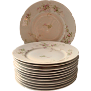 Haviland Limoges 12 Salad Plates Dessert Antique French China Pink White Green