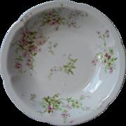 Haviland Limoges Fruit Sauce Bowl Antique French China Pink White Green
