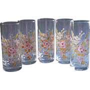 Vintage Hand Enameled Glass Tall Tumblers Pretty Wildflowers Bows