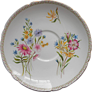 Shelley Saucer Wild Flowers Vintage Bone China