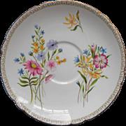 Shelley Saucer Wild Flowers Vintage Bone China