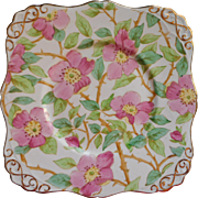 Vintage Tuscan Hand Painted English Bone China Square Dessert Serving Plate Tea Pink Green