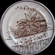 Transferware Plate Antique Brown Aesthetic Butterflies Orchids Basket Weave Graphics TLC