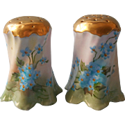 Antique Hand Painted China Salt Pepper Shakers Forget Me Not Flowers