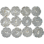Vintage Carved Mother Of Pearl Flower Form Buttons Set 12