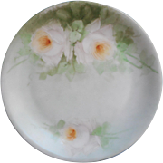 Aqua Hand Painted China Plate White Roses To Hang Bavaria