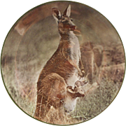 Royal Doulton Plate Mother Kangaroon With Joey Vintage China