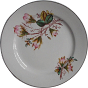 Moss Rose Antique Plate George Jones And Sons England