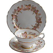 Grosvenor Cambrideg Pink Gold Vintage Trio Cup Saucer Tea Plate English Bone China