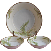 Ferns Antique China Serving Bowl 2 Berry Dish Bowls Prussia