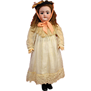 Antique Bisque Simon Halbig 1079 In Antique Cotton Dress