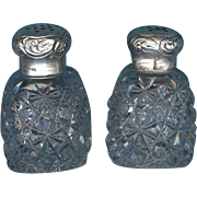 Antique American Cut Glass Salt and Pepper Shakers in the Russian Pattern. - Red Tag Sale Item