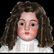 Gorgeous Vintage Dark Brown Wig w Long Sausage Curls--sz 14-15