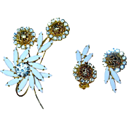 Beautiful Pristine Juliana / D & E Floral Brooch & Earrings--Book Piece