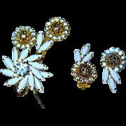 Beautiful Pristine Juliana / D & E Floral Brooch & Earrings--Book Piece