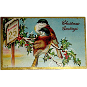Beautiful  Birds Christmas Postcard w American Red Cross Stamp