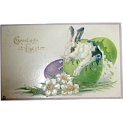 Stecher Easter Postcard—Black and White Rabbit Hatches from Large Egg