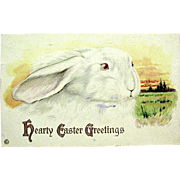 Stetcher Easter Postcard--Large White Rabbit -- free shipping