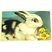 Pristine German Easter Postcard - Large Black & White Rabbit (2 of 2)