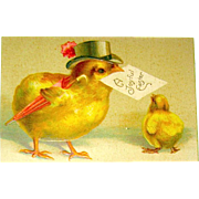 IAPC Easter Postcard - Dressed Mother Chick & Baby