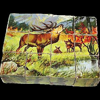 Antique German Puzzle Blocks, Boxed, w Lithographs—Animal Set—Excellent