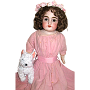 Early Bisque Shoulder Head Kestner Dep. Doll - Pretty in Pink