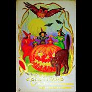 Mint Condition Halloween Postcard - Five Witches, Huge JOL, Large Black Cat, Owl, Bats
