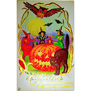 Mint Condition Halloween Postcard - Five Witches, Huge JOL, Large Black Cat, Owl, Bats