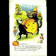 Unused Whitney Halloween Postcard - Black Cats, Mice, Big Brass Drum