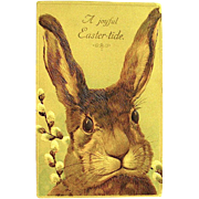 Stunning 1910 Postcard ~ Large Beautiful Head of Easter Rabbit