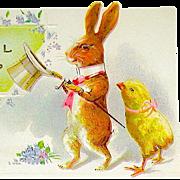 Pristine Humanized Rabbit & Chick Easter Postcard