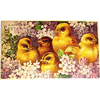 Beautiful Unused German Easter Postcard - Chicks Among Purple Flowers