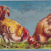 Vintage Easter Greetings Chicken Family Looks at a Snail Postcard 1914